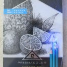 Prismacolor Premier 12 Sketching pencils in case SOFT Turquoise art sketch draw
