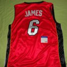 Lebron James Miami Heat Signed Autographed PSA/DNA Authenticated Basketball Jersey COA