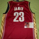 Lebron James Cavaliers Heat Signed Autographed GAI Authenticated Basketball Jersey COA