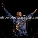 """""""King of the Blues"""" BB King 8""""x10"""" Color Concert Photo"""