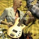 "King Crimson Tony Levin 8""x10"" Color Concert Photo"