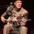 """Musician Marshall Crenshaw 8""""x10"""" Color Concert Photo"""