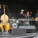 """The Wiyos Full Band 8""""x10"""" Color Concert Photo"""