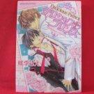 Delicious Prince YAOI Manga Japanese / Sae Momoki