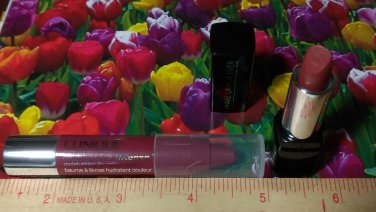 2 Lip Products ~ Make Up For Ever Lipstick N9 + Clinique Chubby Stick Intense BROADEST BERRY ~