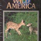 Wild Babies--Wild America VHS