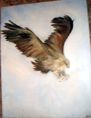 Eagle I - AAea