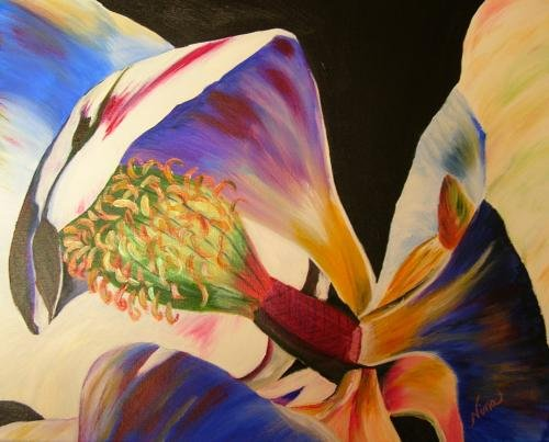 Magnolia Closeup Print - NWocp