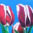 Hybrid Tulips Print - NWhtp