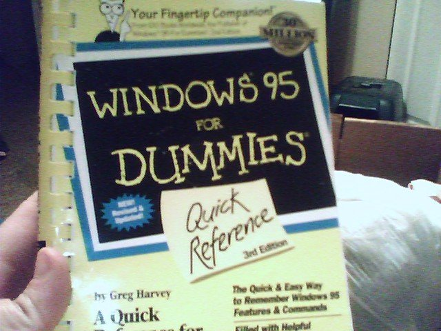 Windows 95 for Dummies Book - TLCwi