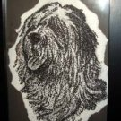 English Sheepdog - AAla