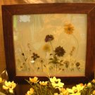 Cherry Frame with Pressed Garden Scene - CRgs