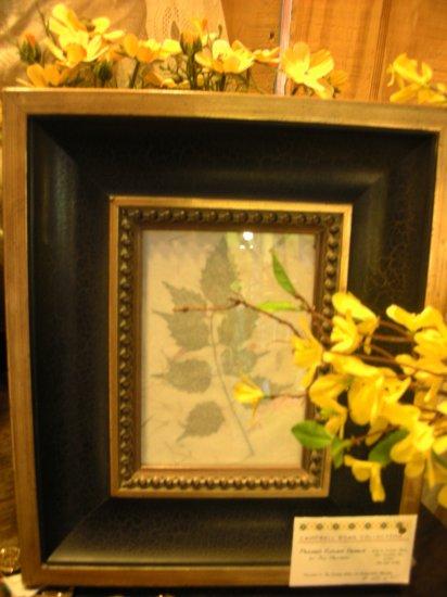 Black & Gold Frame with  Pressed Leaf - CRbg