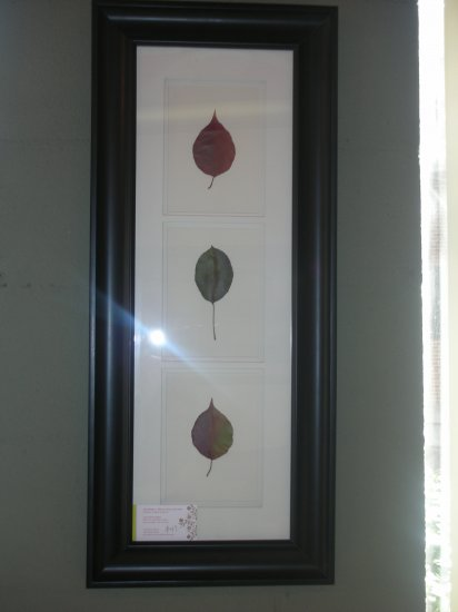 Black Frame With Leaves - CRle