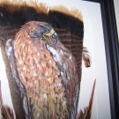 Golden Eagle Framed Feather Art - OWge