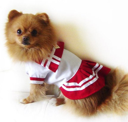 Red Sailor Dress Costume ~XS~