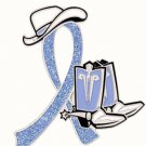 Stomach Cancer Periwinkle Glitter Ribbon Cowgirl Cowboy Western Boots Hat Pin