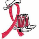 Lymphoma Red Glitter Ribbon Cowgirl Cowboy Western Boots Hat Lapel Pin New