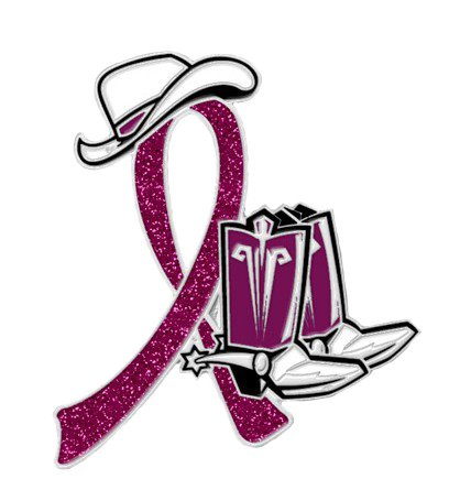 Disabled Adults Burgundy Glitter Ribbon Cowgirl Cowboy Western Boots Hat Pin New