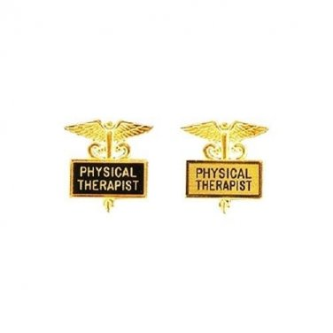 Physical Therapist Pin Inlaid Framed Caduceus Therapy Graduation 2 Colors 3512