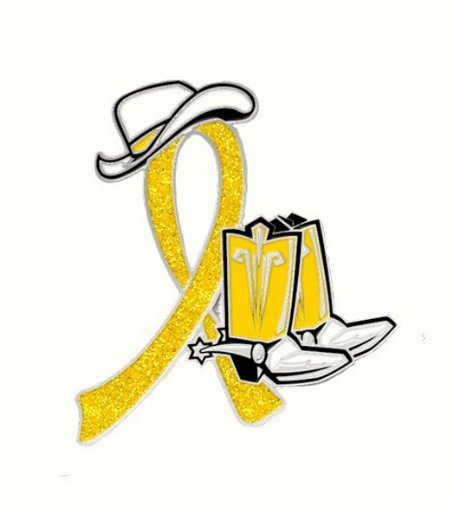Endometriosis Yellow Glitter Ribbon Cowgirl Cowboy Western Boots Hat Pin New