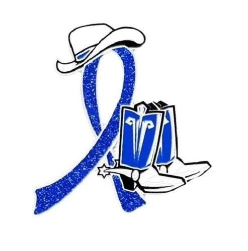 Ichthyosis Awareness Blue Glitter Ribbon Cowboy Western Boots Hat Pin