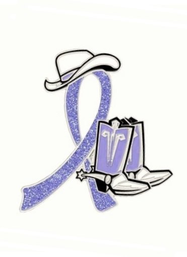 Small Intestine Cancer Periwinkle Glitter Ribbon Cowboy Western Boots Hat Pin