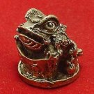 CHINESE MINI AMULET MAGIC FROG ON CHINA MONEY REAL LUCKY WEALTH CHARM HAPPY RICH