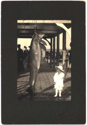 Oversize cabinet card of young child and dolphin