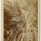 Seven Falls, Cheyene Canon Oversize Cabinet