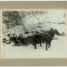 Winter Sleigh Scene