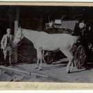 Three English Equestrian Photographs
