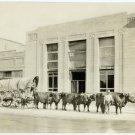 Ox Team Outside a Bank Silver Photograph