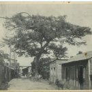 Santo Domingo Photograph