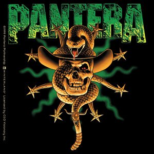 Pantera Vinyl Sticker Snake Skull Logo