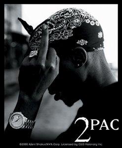 Tupac Shakur 2 Pac Vinyl Sticker Bandana Photo Logo