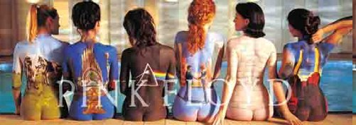 Pink Floyd Fabric Door Poster Back Catalog