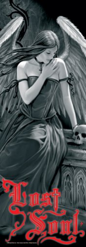 Anne Stokes Fabric Door Poster Lost Soul New