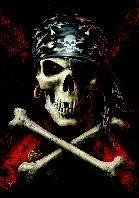 Anne Stokes Poster Flag Pirate Skull