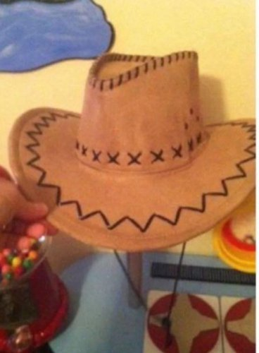 Mens or Halloween Costume Dress Up Suede Cowboy Hat with Cord $9.99