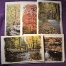 Nature Scene Photo Greeting Cards 5 pack Handmade