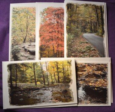 Nature Scene Photo Greeting Cards 5 pack Handmade