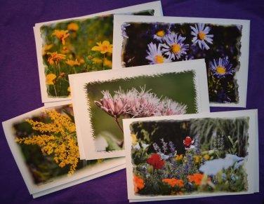 Flower Photo Greeting Cards 5 pack Handmade