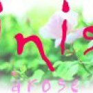Inis Arose EAU DE PARFUM SPRAY