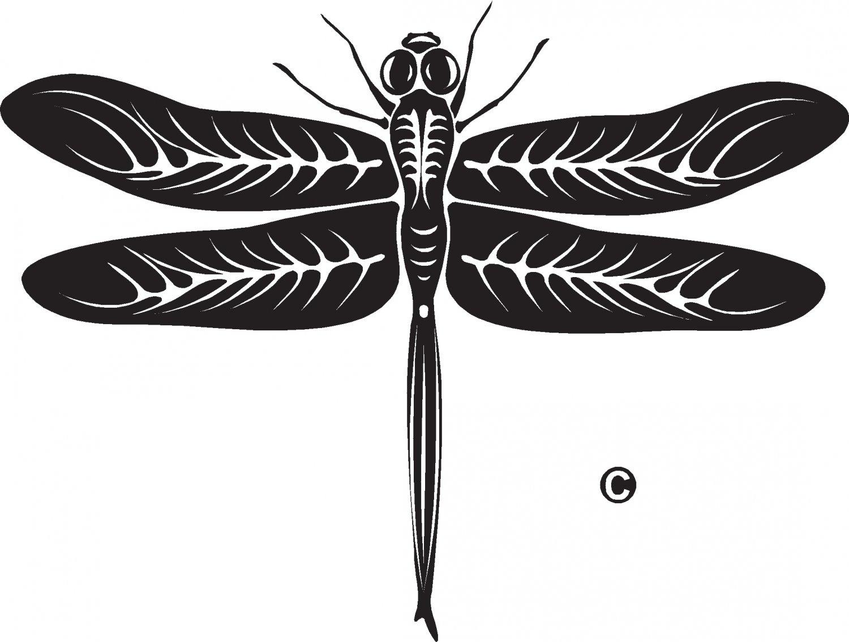 dragon fly vinyl decal sticker