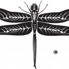 dragon fly vinyl decal sticker
