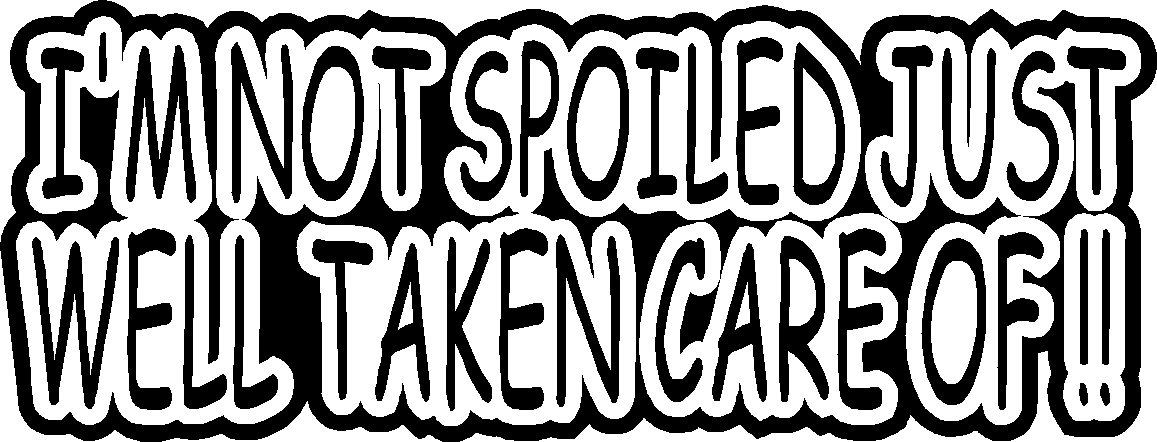 """I'M NOT SPOILED JUST WELL TAKEN CARE OF VINYL DECAL STICKER 8.5"""" WIDE!"""