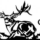 "MULE DEER VINYL DECAL STICKER 7"" WIDE!"