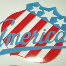 "ROCHESTER AMERICANS AMERKS LAPTOP FULL COLOR VINYL DECAL STICKER 3.33""W 2.27""T"