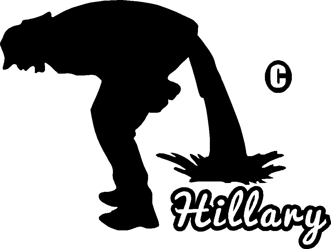 pee piss poo diarrhea on hillary vinyl decal sticker